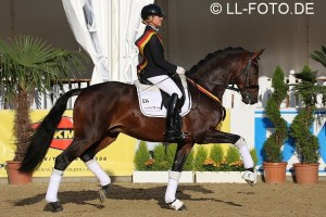 Fuerst William HC Trot